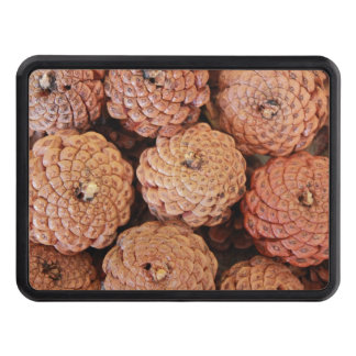 Pine Cones Trailer Hitch Covers