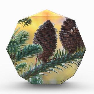 Pine Cones Woodlands Nature Scene Acrylic Award