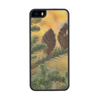 Pine Cones Woodlands Nature Scene Carved® Maple iPhone 5 Case