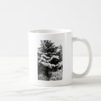 Pine Covered in Lowland Snow Olympia WA Classic White Coffee Mug