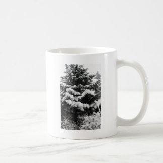 Pine Covered in Lowland Snow Olympia WA Coffee Mug