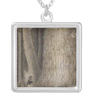 Pine Forest, Oregon Silver Plated Necklace