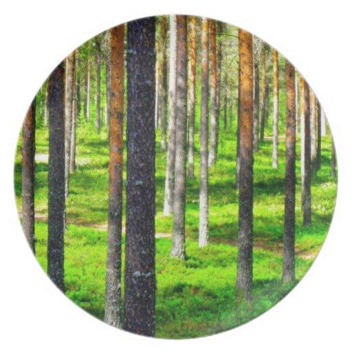 Pine forest dinner plates