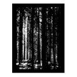 pine forest postcard