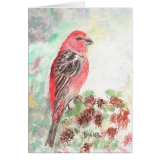 Pine Grosbeak Notecard