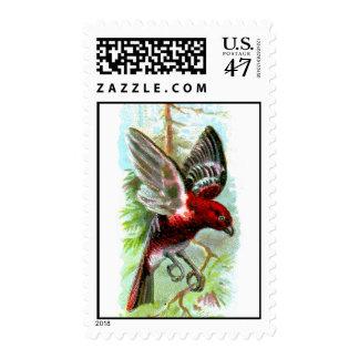 Pine Grosbeak Postage Stamp