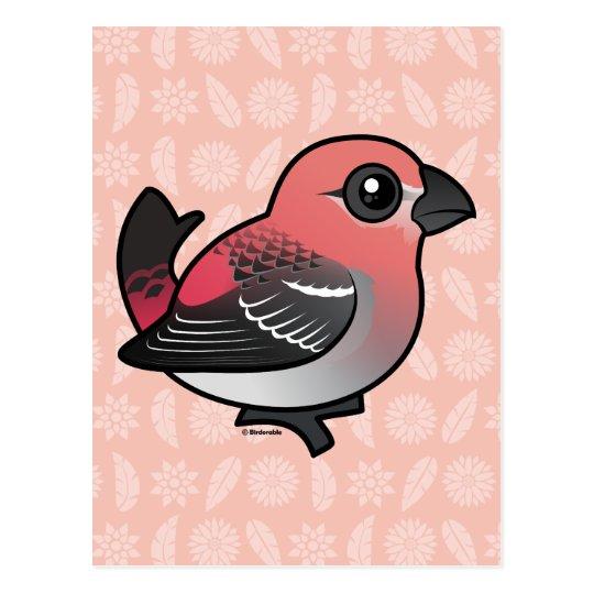 Pine Grosbeak Postcard