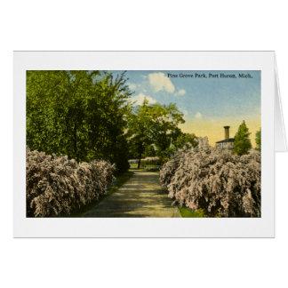 Pine Grove Park Port Huron Michigan Vintage Card