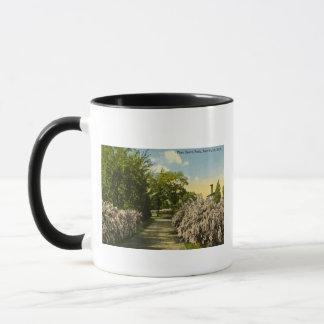 Pine Grove Park Port Huron Michigan Vintage Mug