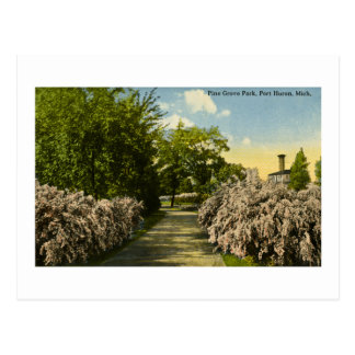 Pine Grove Park Port Huron Michigan Vintage Postcard