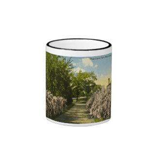 Pine Grove Park Port Huron Michigan Vintage Ringer Mug