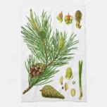 pine handtücher