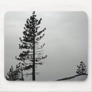 Pine in snow mouse pad