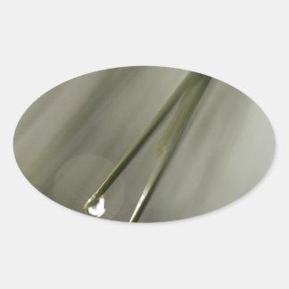 Pine Leaf Oval Sticker