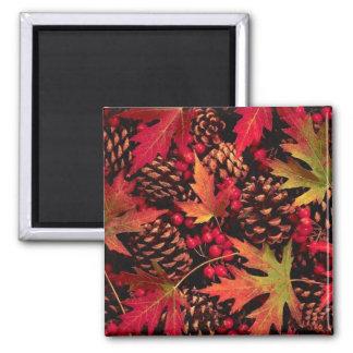Pine & Leaves Magnet