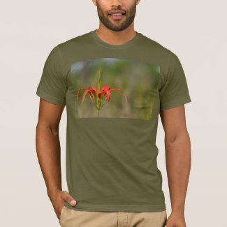 Pine Lily T-shirt for men