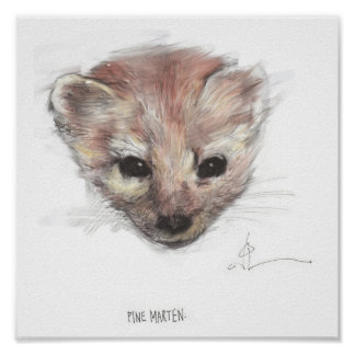 Pine Marten Print