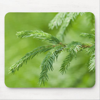 Pine Mouse Pad