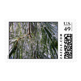 Pine Needle Sparkle 2 Postage Stamp