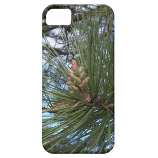 Pine Needles and Branches iPhone SE/5/5s Case