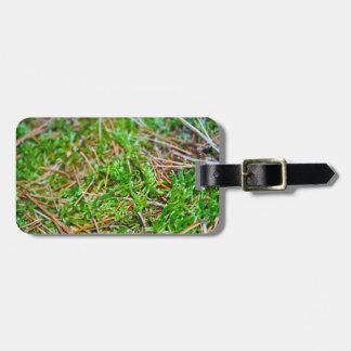Pine Needles and Moss Bag Tags