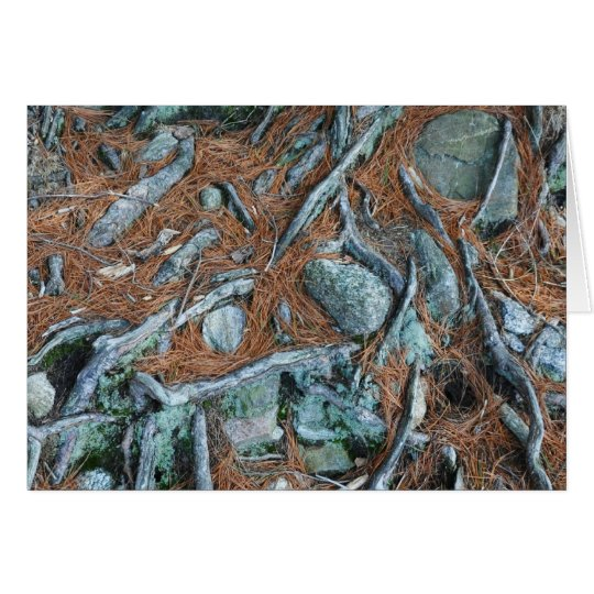 Pine Needles and Tree Roots Card