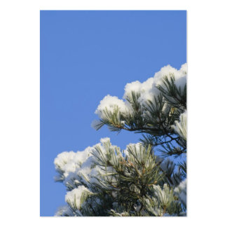 Pine needles large business cards (Pack of 100)
