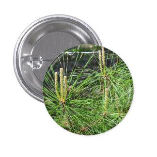 Pine Needles 1 Inch Round Button