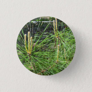 Pine Needles by Kenneth Yoncich Button