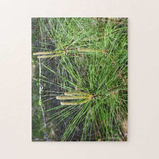 Pine Needles by Kenneth Yoncich Jigsaw Puzzle