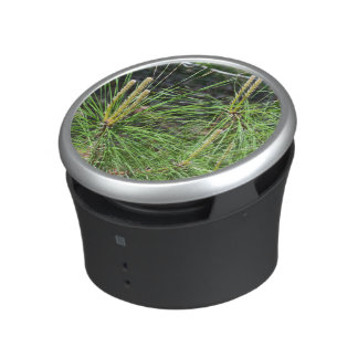 Pine Needles by Kenneth Yoncich Speaker