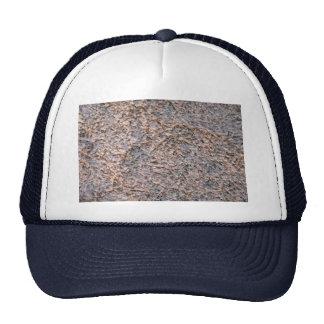 Pine needles in fresh snow trucker hat