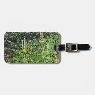 Pine Needles Luggage Tag