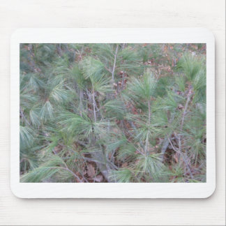 Pine needles mouse pad