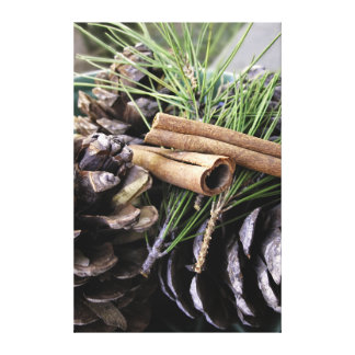 Pine Needles On Canvas Gallery Wrap Canvas