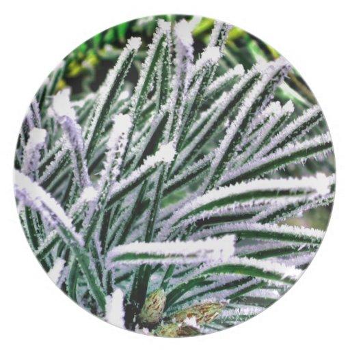 pine needles party plates