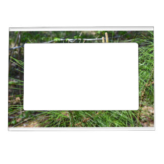 Pine Needles Photo Frame Photo Magnet Magnetic Picture Frame