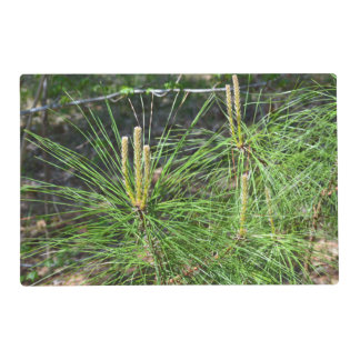 Pine Needles Placemat