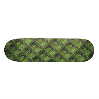 Pine Needles Skateboard Deck