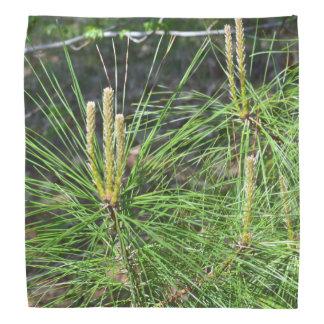 Pine Needles Bandana