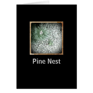 Pine Nest Retro Photo Card