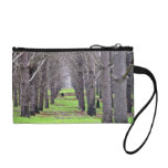 Pine plantation covered by grass change purse