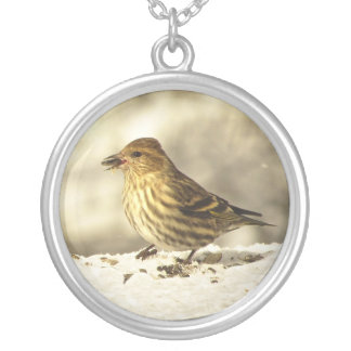 Pine Siskin Silver Plated Necklace