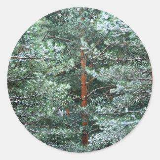 Pine Subject Classic Round Sticker