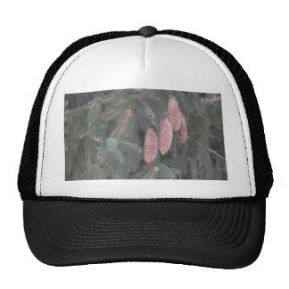 Pine Tree and Pine Cones Trucker Hat