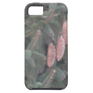 Pine Tree and Pine Cones iPhone SE/5/5s Case