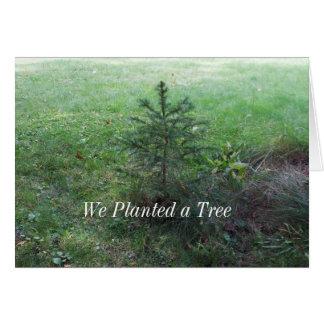 Pine Tree-Arbor Day Greeting Card