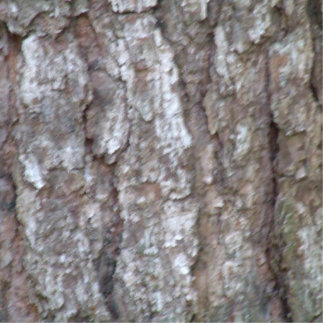 Pine Tree Bark Camo Natural Wood Camouflage Statuette
