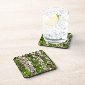 Pine Tree Bark With Moss Beverage Coaster