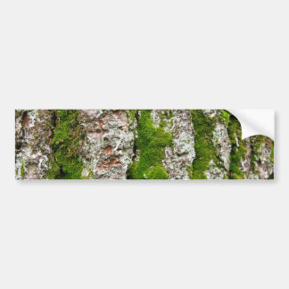 Pine Tree Bark With Moss Bumper Sticker